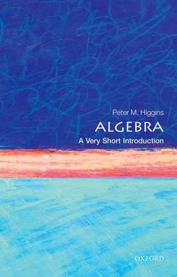 Algebra: A Very Short Introduction (BOK)