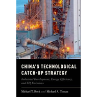 China's Technological Catch-Up Strategy (BOK)