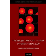 The Project of Positivism in International Law (BOK)