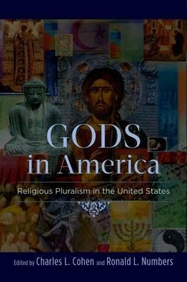 Gods in America: Religious Pluralism in the United States (BOK)