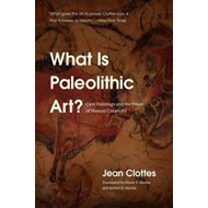 What is Paleolithic Art? (BOK)