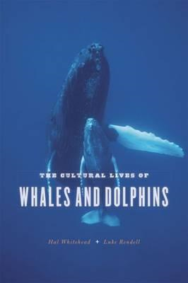 Cultural Lives of Whales and Dolphins (BOK)