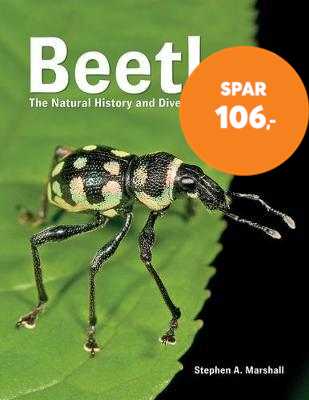 Beetles - The Natural History and Diversity of Coleoptera (BOK)