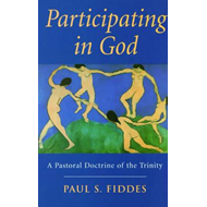 Participating in God: A Pastoral Doctrine of the Trinity (BOK)