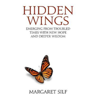 Hidden Wings (BOK)