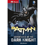 DC Comics Batman Adventures of the Dark Knight (BOK)