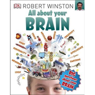 All About Your Brain (BOK)