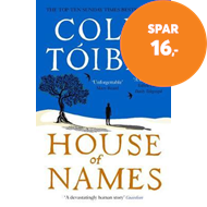 Produktbilde for House of Names (BOK)
