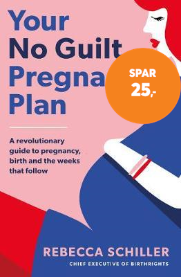 Your No Guilt Pregnancy Plan (BOK)