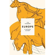 Produktbilde for Europe (BOK)