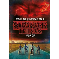 How to Survive in a Stranger Things World (BOK)