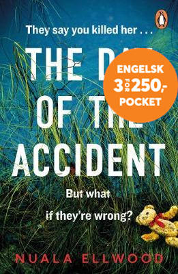 Day of the Accident (BOK)