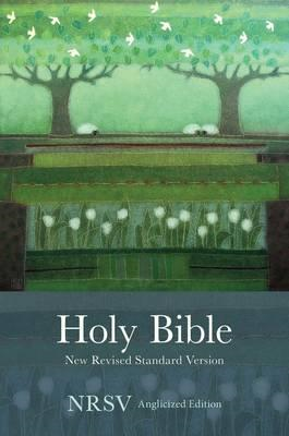 Holy Bible New Standard Revised Version (BOK)