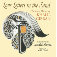 Love Letters in the Sand (BOK)