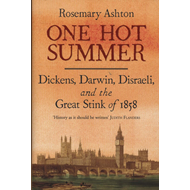 One Hot Summer (BOK)