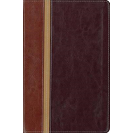 Message Parallel Study Bible-PR-NIV/MS-Numbered Personal Siz (BOK)