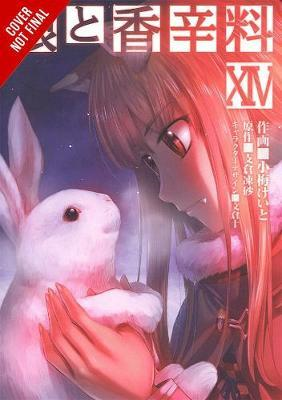 Spice and Wolf, Vol. 14 (manga) (BOK)