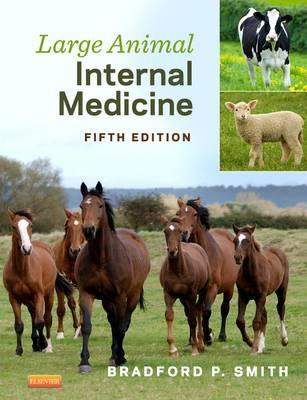 Large Animal Internal Medicine (BOK)
