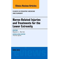 Nerve Related Injuries and Treatments for the Lower Extremit (BOK)