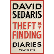 Theft by Finding (BOK)