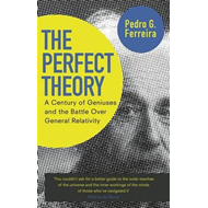 Perfect Theory (BOK)