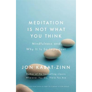 Meditation is Not What You Think (BOK)