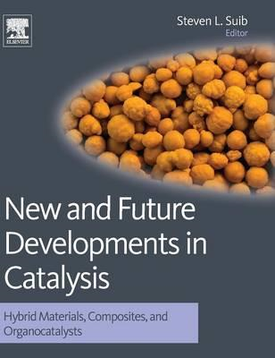New and Future Developments in Catalysis: Hybrid Materials, Composites, and Organocatalysts (BOK)
