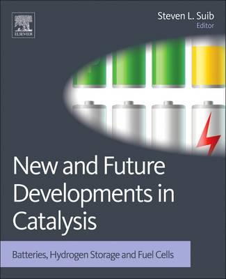 New and Future Developments in Catalysis: Batteries, Hydrogen Storage and Fuel Cells (BOK)