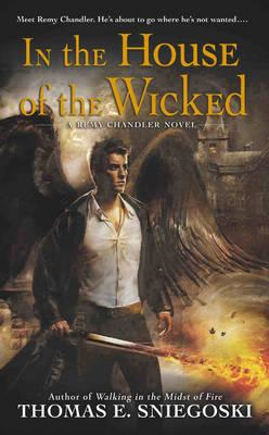 In the House of the Wicked: A Remy Chandler Novel (BOK)