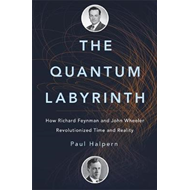 The Quantum Labyrinth (BOK)