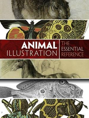 Animal Illustration: The Essential Reference (BOK)