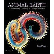 Animal Earth: The Amazing Diversity of Living Creatures (BOK)