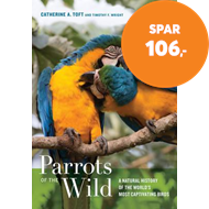 Produktbilde for Parrots of the Wild - A Natural History of the World's Most Captivating Birds (BOK)