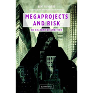 Megaprojects and Risk (BOK)