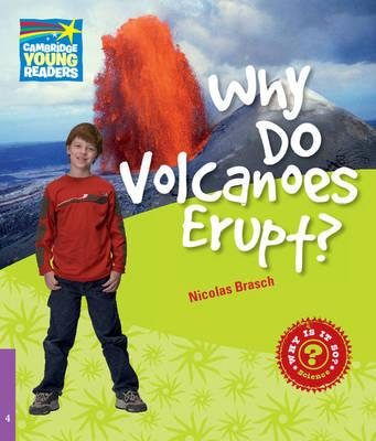 Why Do Volcanoes Erupt? Level 4 Factbook (BOK)