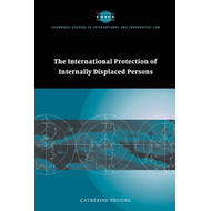 The International Protection of Internally Displaced Persons (BOK)