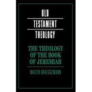 Old Testament Theology (BOK)