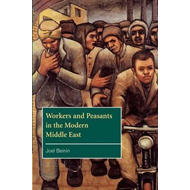 Workers and Peasants in the Modern Middle East (BOK)