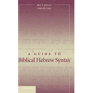 Guide to Biblical Hebrew Syntax (BOK)