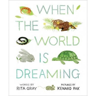 When the World is Dreaming (BOK)