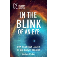 In the Blink of an Eye (BOK)