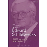 Collected Works of Edward Schillebeeckx Volume 10 (BOK)