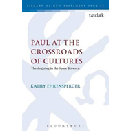Paul at the Crossroads of Cultures (BOK)
