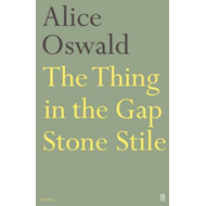 Thing in the Gap Stone Stile (BOK)