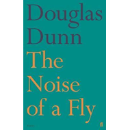 Noise of a Fly (BOK)