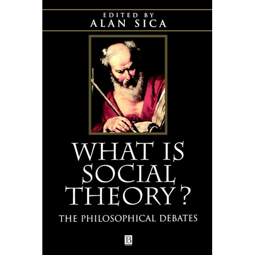 What is Social Theory?: The Philosophical Debates (BOK)