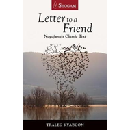 Letter to a Friend (BOK)