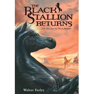 Black Stallion Returns (BOK)