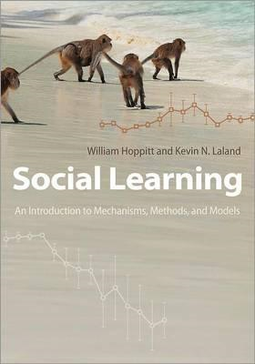 Social Learning: An Introduction to Mechanisms, Methods, and Models (BOK)