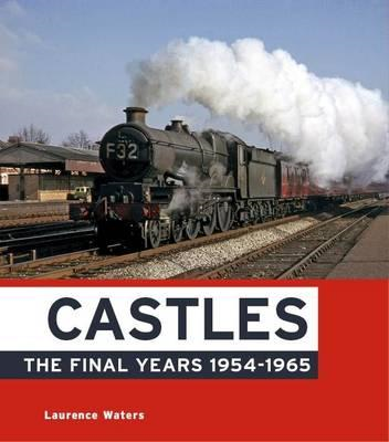 Castles: The Final Years (BOK)